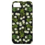 Swiss Edelweiss Alpine Flowers iPhone Case iPhone 5 Cases