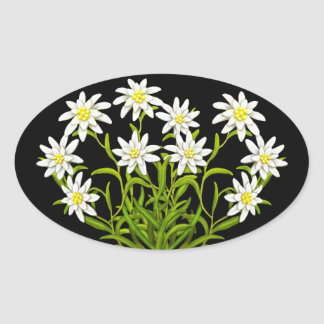 Swiss Edelweiss Flowers Bouquet Sticker