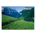 Swiss Landscape Cards