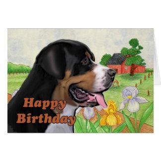 swissie  birthday card cards