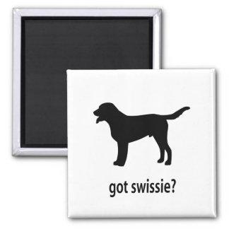 Swissie conseguido imán cuadrado