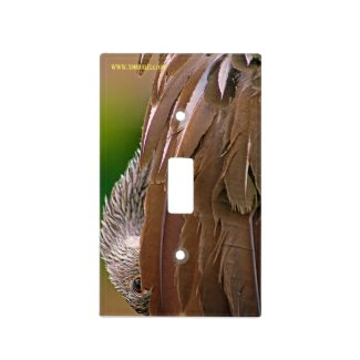 Switching Limpkin Light Switch Cover