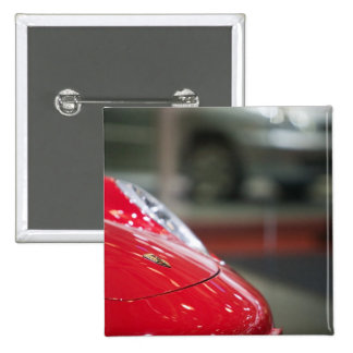 SWITZERLAND, GENEVA: 75th Annual Geneva Auto 2 Button
