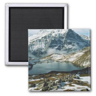 Switzerland, Grindelwald, Bernese Alps, View Magnet