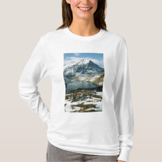 Switzerland, Grindelwald, Bernese Alps, View T-Shirt