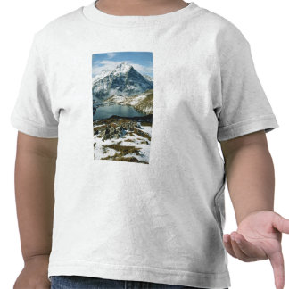 Switzerland, Grindelwald, Bernese Alps, View Tees