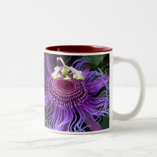 Swizzle púrpura taza de dos tonos