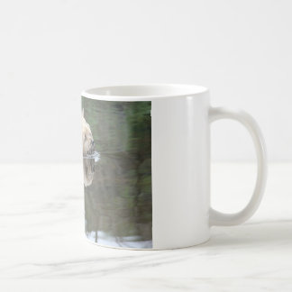 swmming dog coffee mug