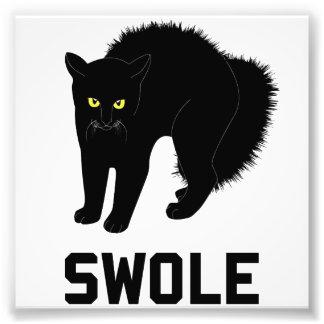 Swole Cat is Kitten Swole Art Photo