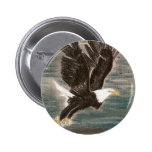 SWOOP FOR FUN PINBACK BUTTON