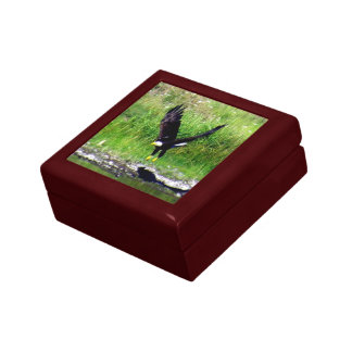 Swooping Eagle Gift Box