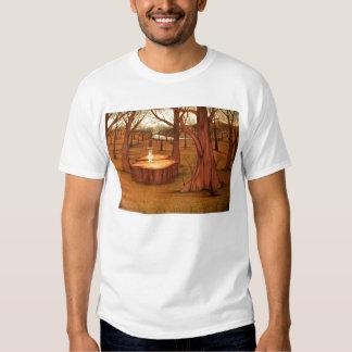 sword stone tee shirt