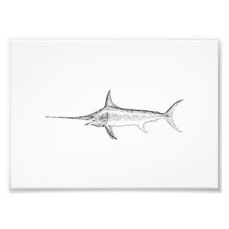 Swordfish Art Photograph