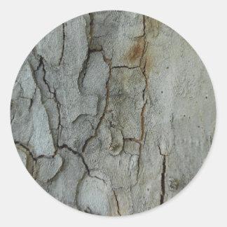 Sycamore Bark Classic Round Sticker