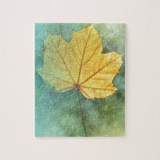 Sycamore Maple Autumn Leaf Puzzle