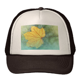 Sycamore Maple Autumn Leaf Trucker Hat