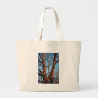 Sycamore Sunrise Jumbo Tote Bag