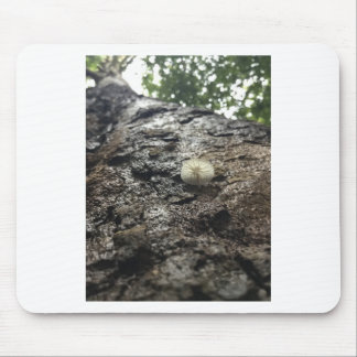 Sycamore Tower Mouse Pad