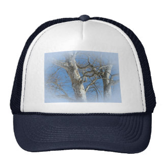 Sycamore Tree Against Winter Sky Items Trucker Hat