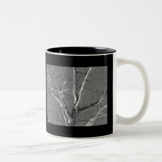 Sycamore Tree Against Winter Sky Items Two-Tone Coffee Mug