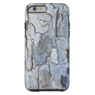Sycamore Tree Bark Pattern Tough iPhone 6 Case