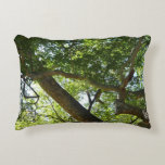 Sycamore Tree Green Nature Photography Accent Pillow