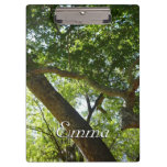 Sycamore Tree Green Nature Photography Clipboard