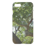 Sycamore Tree Green Nature Photography iPhone 7 Case