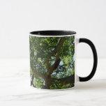 Sycamore Tree Green Nature Photography Mug