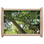 Sycamore Tree Green Nature Photography Serving Tray
