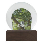 Sycamore Tree Green Nature Photography Snow Globe