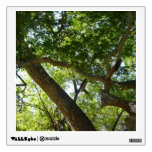 Sycamore Tree Green Nature Photography Wall Decal
