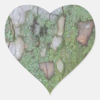 Sycamore Tree Heart Sticker