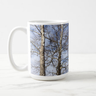 Sycamore Trees in a Winter Sky --- Coffee Mug