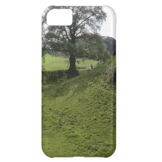 Sycharth - el hogar del héroe Owain Glyndŵr Galés Funda iPhone 5C
