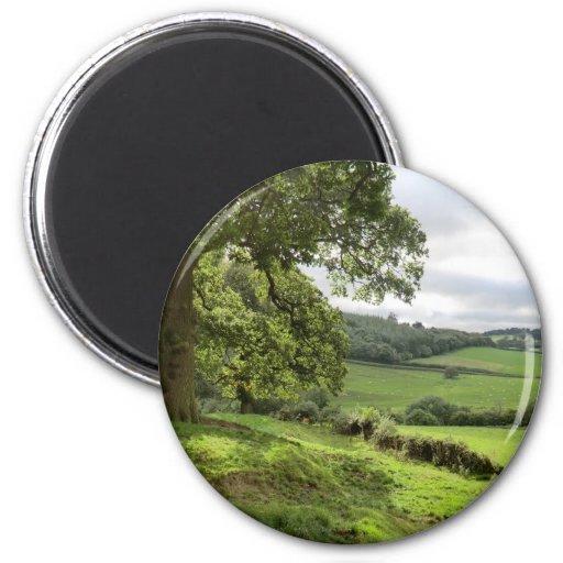 Sycharth en Powys, País de Gales, durante equinocc Iman De Frigorífico
