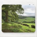 Sycharth en Powys, País de Gales, durante equinocc Tapetes De Raton
