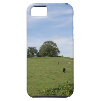 Sycharth - Motte and Bailey Home of Owain Glyndŵr iPhone 5 Cases