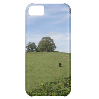Sycharth - Motte and Bailey Home of Owain Glyndŵr Cover For iPhone 5C