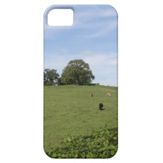 Sycharth - Motte and Bailey Home of Owain Glyndŵr iPhone 5 Case