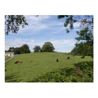 Sycharth - Motte y hogar de Bailey de Owain Postales