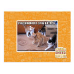 Sychronized Spaz Attack Post Cards