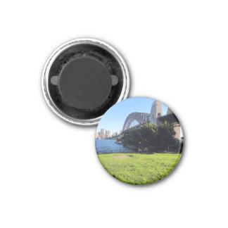 syd bridge grass 1 inch round magnet