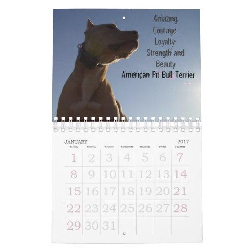 Sydney and Ziggi 2009 Calendar