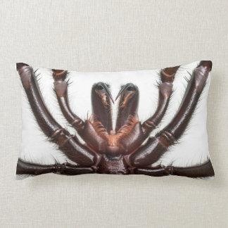 Sydney Funnel-Web Spider Lumbar Pillow