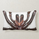 Sydney Funnel-Web Spider Pillow
