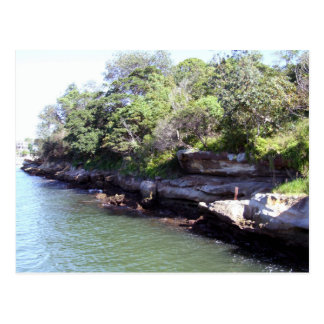 Sydney Harbour Foreshore Postcard