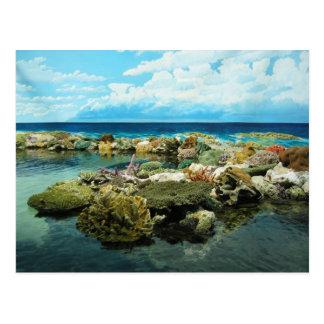 Sydney la gran barrera de coral postal