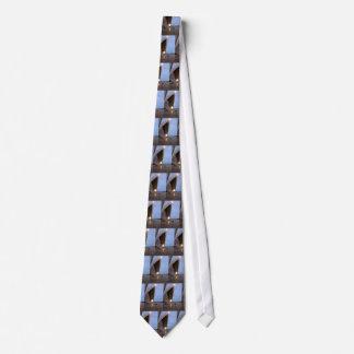 Sydney Opera House Neck Tie