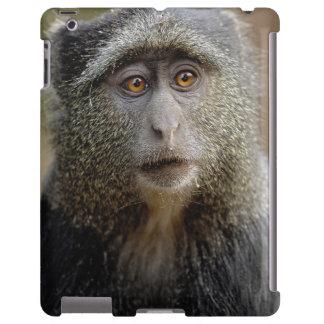 Sykes o mono azul, mitis del Cercopithecus, Funda Para iPad